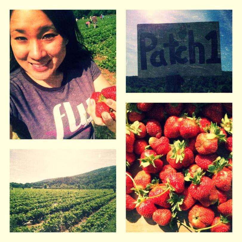 Strawberry Patch!